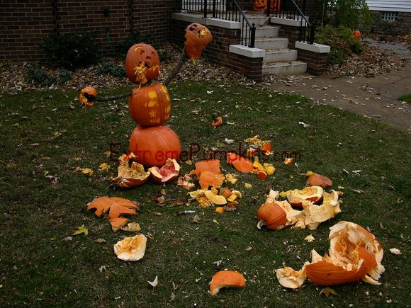 the-territorial-pumpkin-on-my-lawn-2
